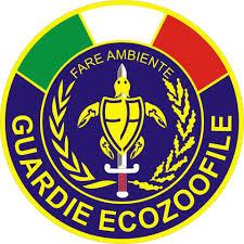 logo guardie