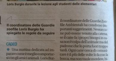 Da Piacenza lezioni per rapportarsi con Fido.