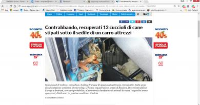 Rimini. Carabinieri Forestali e GEZ sequestrano cuccioli stipati in un carro attrezzi ammassati in condizioni precarie