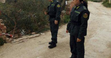 """Strage di cani in Sicilia, le Gez di Agrigento presenziano alla messa in sicurezza dei """"superstiti"""""""