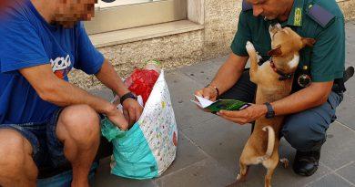 Le Gez di Rimini effettuano controlli anti accattonaggio