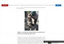 Mazara del Vallo (TP): Gez salvano cucciolo gettato nel fiume