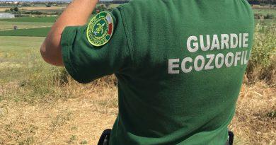 La regione Calabria decreta 28 Guardie Venatorie di FareAmbiente
