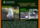 Laboratorio Verde di Manziana-S.Marinella: È iniziato il 1° corso per Guardie Zoofile Volontarie