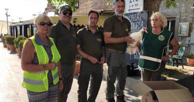 """Interventi delle Guarzie Zoofile del Laboratorio Verde Fare Ambiente di """"Manziana – Santa Marinella"""""""
